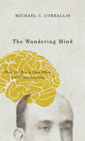 The Wandering Mind - What the Brain Does When You`re Not Looking