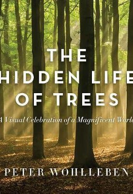 The Hidden Life of Trees - The Illustrated Edition