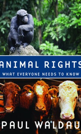 Animal Rights - What Everyone Needs to Know