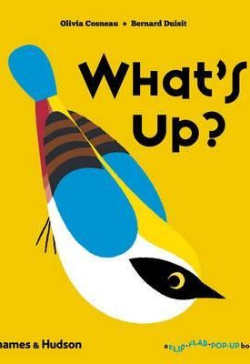 What`s Up? (Flip Flap Pop-Up)