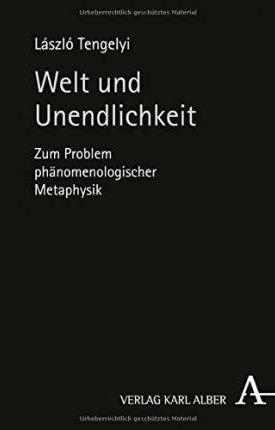 Welt und Unendlichkeit: Zum Problem phänomenologischer Metaphysik
